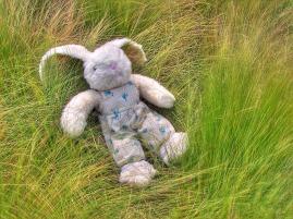 04900_Toy_Rabbit