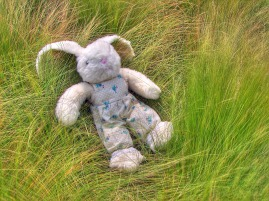 04900_Toy_Rabbit